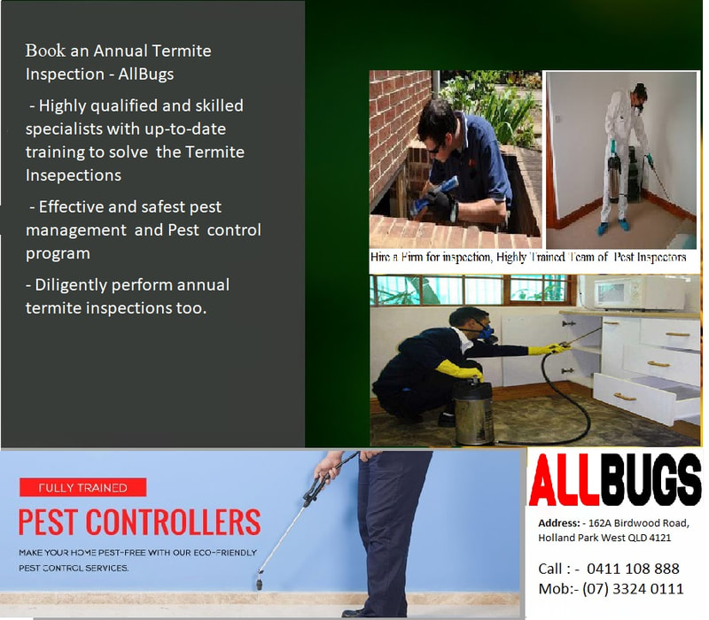 Termite Treatment Experts