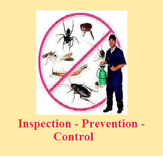safety Pest Control